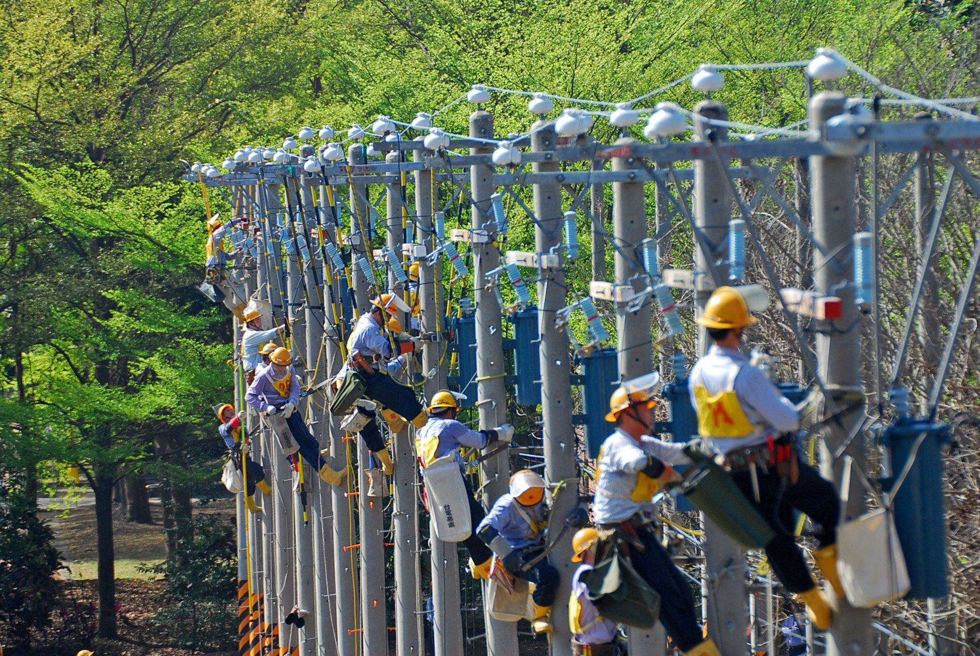 106年台電招考開缺617人 報名至18日