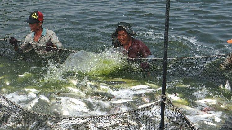 107年漁會升等人員考試 開缺108名